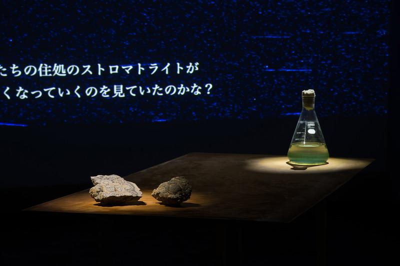 © YOSHISATO KOMAKI